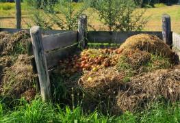 10 conseils pour créer un compost parfait