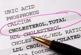 Petit guide pour le test decholestérol