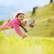 4 pistes pour nourrir votre chien
