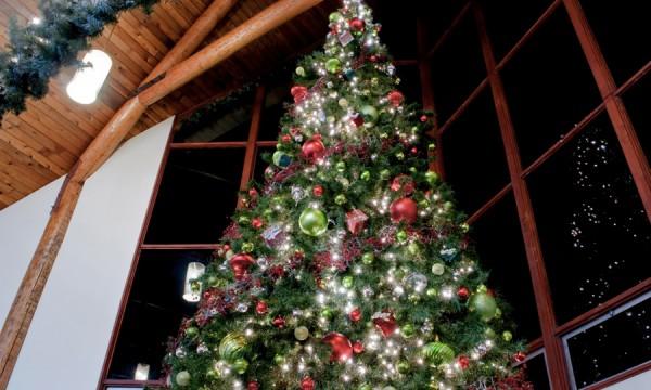 Créez un sapin de Noël unique avec ces idées de décoration originales