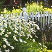 9 étapes pour poserune clôtureou un grillage