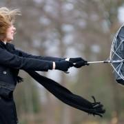 Journée de pluie: comment réparer un parapluie et commencer à tricoter