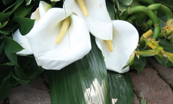Comprendre les rites funéraires maçonniques
