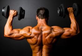 Musculation : 3 parties du corps à entraîner
