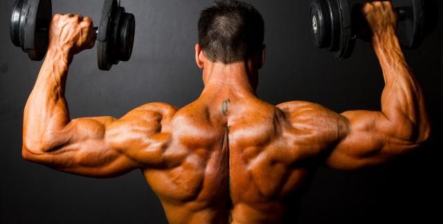Musculation: 3 parties du corps à entraîner