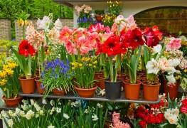 Faites vos pots à fleurs en métal personnalisés