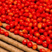 Quelques façons créatives d'introduire les tomates dans vos recettes