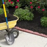 3 avantages fabuleux du paillage pour votre jardin