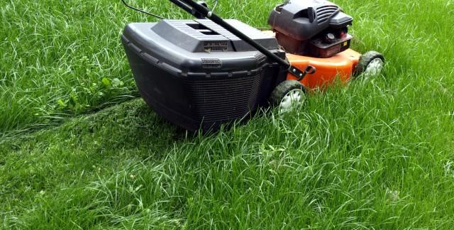 5 conseils pour faire durer vos outils de jardinage électriques