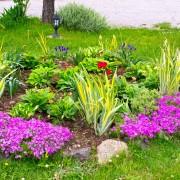 8 conseils pour simplifier l'entretien du jardin