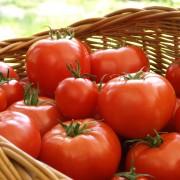 2 délicieuses recettesà base de tomatespour ledéjeuner