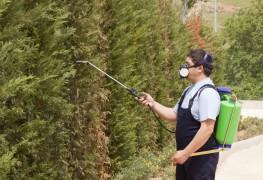 6 conseils pour une utilisation responsable des insecticides