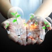 Conseils de rénovation écologique pour unemaison verte