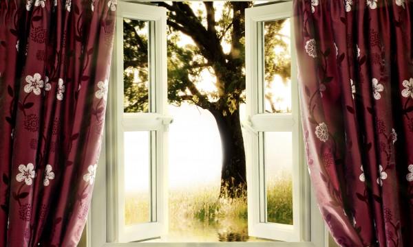 Choix écologiques : ameublement et habillage des fenêtres