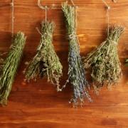 5 façons simples de préserver et faire sécher vos propres herbes