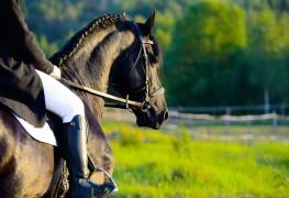 Comment se préparer à faire de l'équitation en toute sécurité