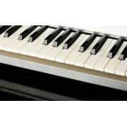 Astuces efficaces et simples pour entretenir un piano