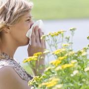 Traitement des allergies: modifier son mode de vie