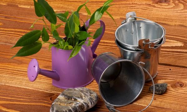 Trucs pratiques : fabriquer des boules de plantes et étapes à suivre