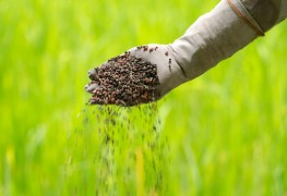 Gagnez du temps et de l'argentavec votre propre compost fait maison