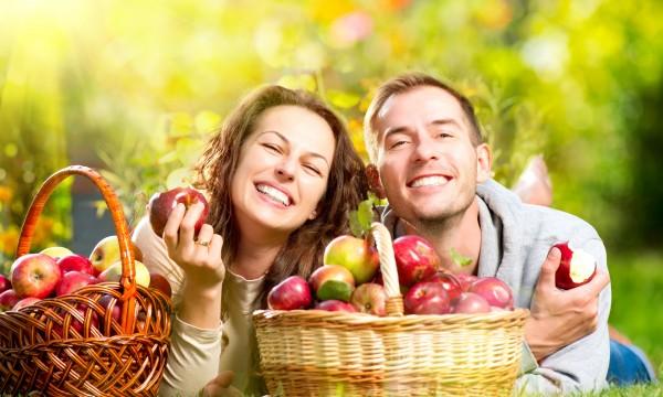 3 façons de trouver des aliments frais locaux