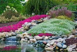 Comment créer un jardin de rocaille