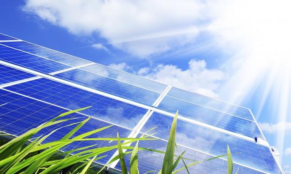 6 raisons de passer au vert avec une toiture écologique