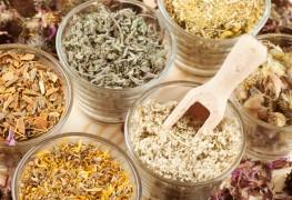 3 plantes magiques pour surmonter la fatigue