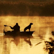 6 conseils pour amener votre chien sur l'eau