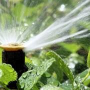 Choisirun système d'arrosage pour votre jardin