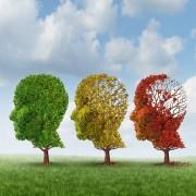 Combattre les pertes de mémoireavec la nourriture