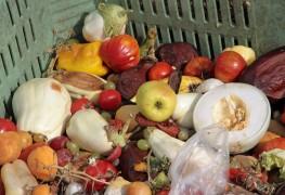 Impliquez lesenfants dans le compostage