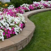 Jardinage: découvrez les secrets de paysagistes