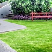 Conseils d'experts pour avoir une pelouse de rêve