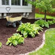 Un guide d'utilisation du paillis dans votre jardin