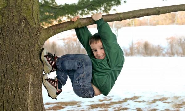 conseils pour grimper un arbre et construire un cerf volant en papier trucs pratiques. Black Bedroom Furniture Sets. Home Design Ideas