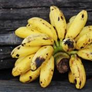 7 saines habitudes alimentaires pour diminuer la pression artérielle
