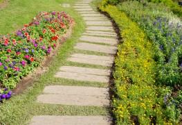 Le jardinage vert: cultiver lesglaïeuls