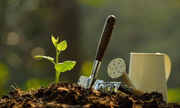 2 méthodes simples pour planifier et aménager votre jardin
