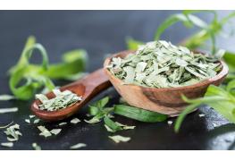 8 infos utiles sur l'estragon : plante médicinale et aromatique
