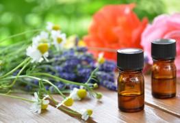 Traiter et prévenir les piqûres d'insectes avec des huiles essentielles