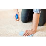 Trucs pratiques et utiles pour nettoyer les taches d'une moquette