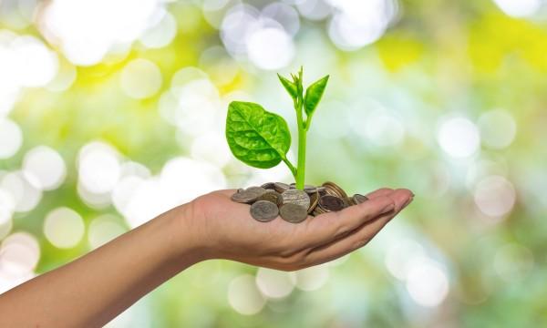 10 conseils pour l'investissement socialement responsable