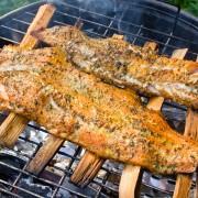 Les 6 meilleurs bois pour fumer viande et poisson