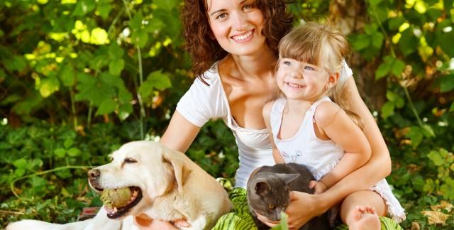 Comment adopter facilement un animal de compagnie chez un éleveur