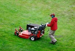 Comment tondre votre pelouse