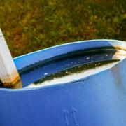 Récupérer l'eau de pluie pour économiser: les techniques