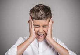 Comprendre et traiter les crisesde panique et les phobies