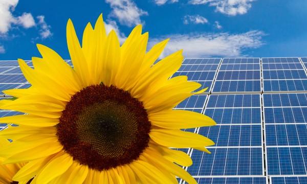 7 façons de rénover votre maison de manière écologique