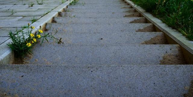 Conseils pratiques d'entretien pour du béton etde l'asphalte